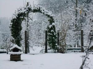 Schnee2014 (3)